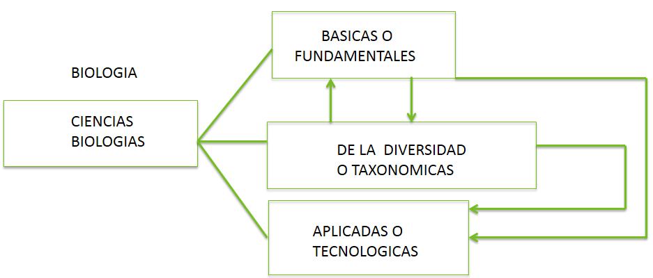 1 1 1 Ciencias Biológicas División De La Biología